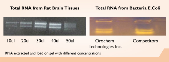 GenQuikTM Tissue RNA Kit